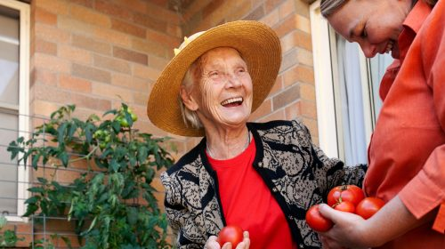 Dementia Essentials - CHCAGE005 Provide support to people living with dementia - Courses - Centre for Dementia Learning | Dementia Australia