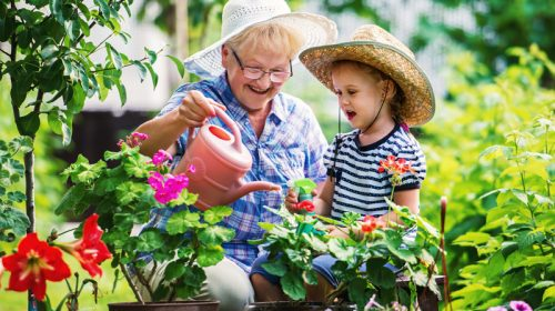 Dementia Australia - Online Courses // Engaging in the outdoors