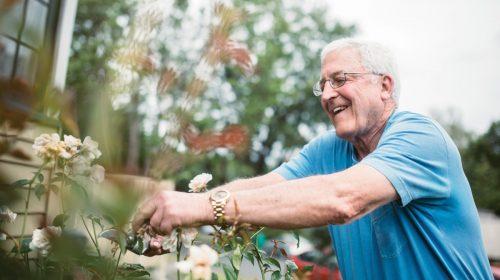Courses - Montessori for dementia | Centre for Dementia Learning
